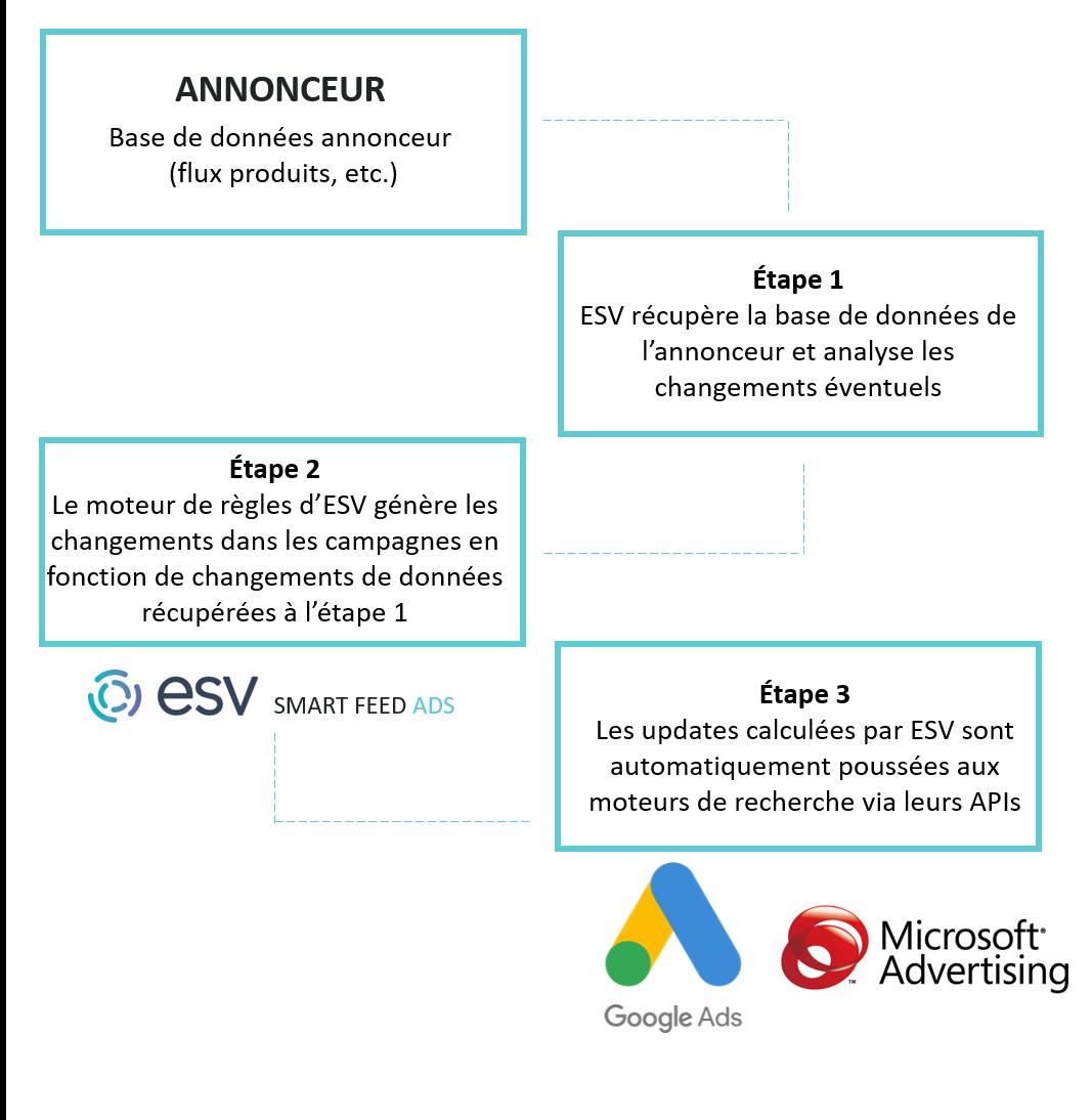 schéma explicatif esv smart feed ads