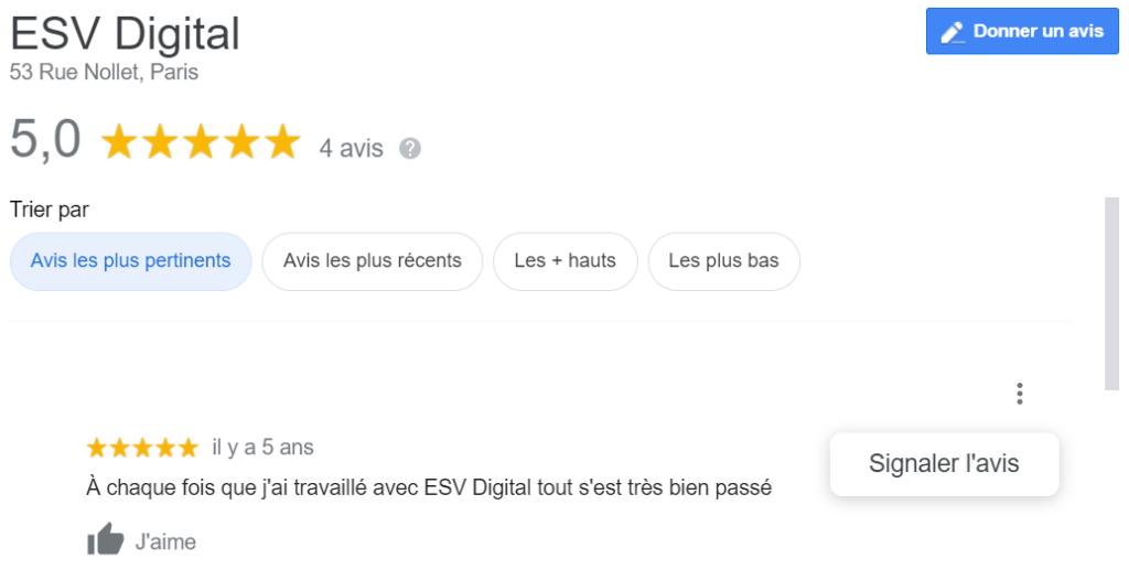 ESV Digital Fiche Google
