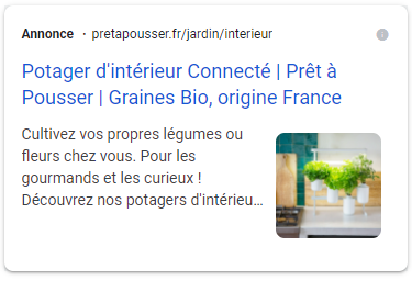 exemple extension image google ads